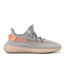 adidas yeezy 350 v2 true form